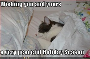 Wishing you and yours  a very peaceful Holiday Season