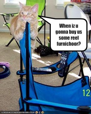 When iz u gonna buy us some reel furnichoor?