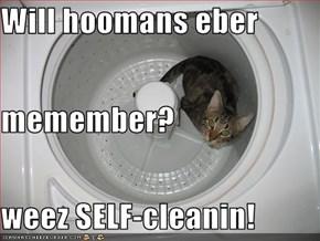 Will hoomans eber  memember? weez SELF-cleanin!
