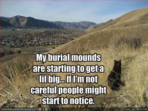 My burial mounds are starting to get a lil big... If I'm not careful people might start to notice.
