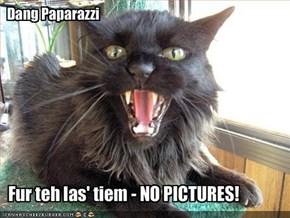 Dang Paparazzi