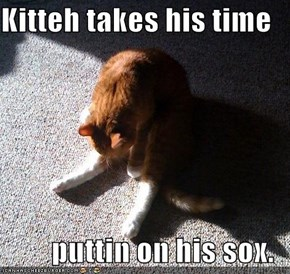 Kitteh takes his time  puttin on his sox.