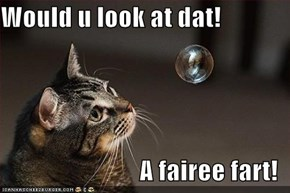 Would u look at dat!  A fairee fart!