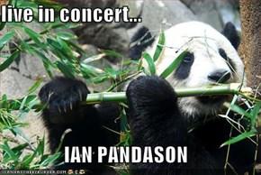 live in concert...  IAN PANDASON