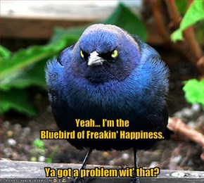 Yeah... I'm the