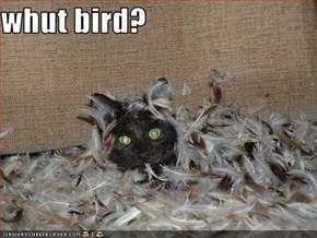 whut bird?