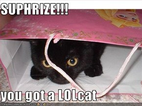 SUPHRIZE!!!  you got a LOLcat