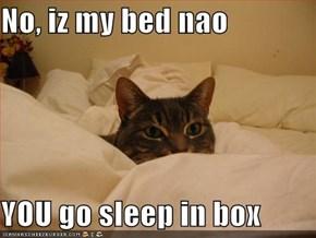 No, iz my bed nao  YOU go sleep in box