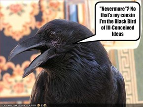"""Nevermore""? No that's my cousin I'm the Black Bird of Ill-Conceived Ideas"