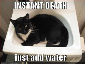 INSTANT DEATH  just add water