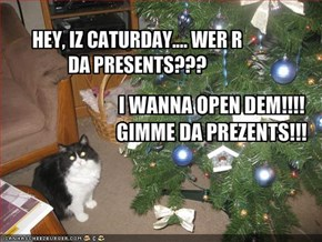 HEY, IZ CATURDAY.... WER R DA PRESENTS???