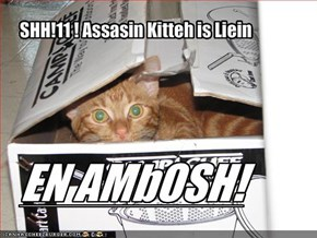 SHH!11 ! Assasin Kitteh is Liein
