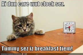 Ai dun care wut clock sez.   Tummy sez iz breakfast tiem!