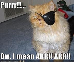 Purrr!!...  Ow, I mean ARR!! ARR!!