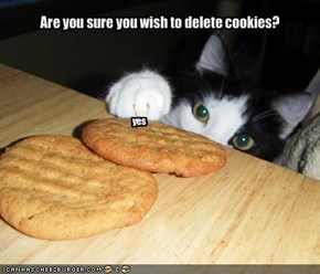 Are you sure you wish to delete cookies?