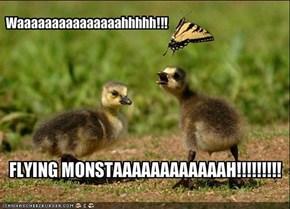Waaaaaaaaaaaaaaahhhhh!!!