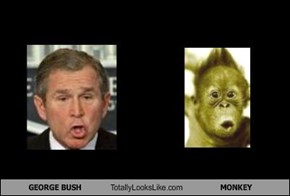 GEORGE BUSH Totally Looks Like MONKEY