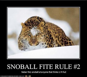 SNOBALL FITE RULE #2