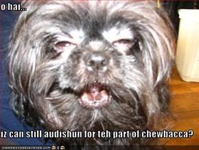 o hai...  iz can still audishun for teh part of chewbacca?