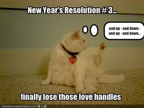 New Year's Resolution # 3...