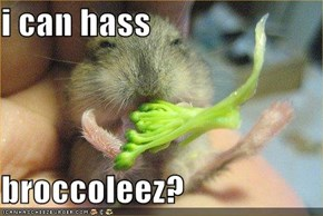 i can hass  broccoleez?