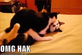 OMG HAX
