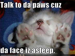 Talk to da paws cuz  da face iz asleep.
