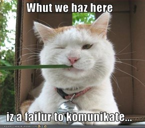 Whut we haz here  iz a failur to komunikate...