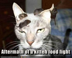 Aftermath of a kitteh food fight