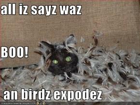 all iz sayz waz  BOO!  an birdz expodez