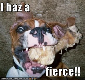 I haz a  fierce!!