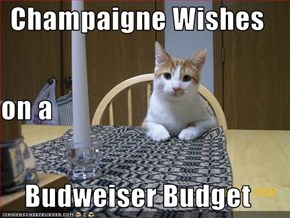 Champaigne Wishes on a Budweiser Budget