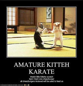 AMATURE KITTEH KARATE