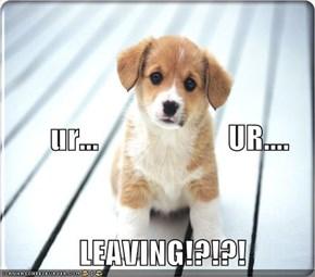 ur...                     UR....     LEAVING!?!?!