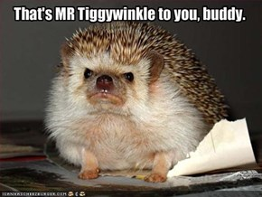 That's MR Tiggywinkle to you, buddy.