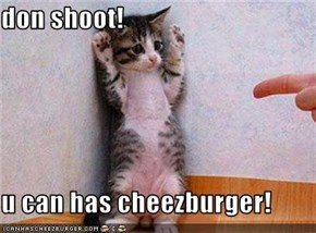 don shoot!  u can has cheezburger!