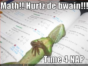 Math!! Hurtz de bwain!!!  Time 4 NAP