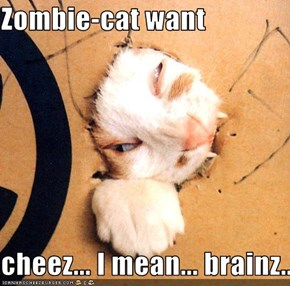 Zombie-cat want  cheez... I mean... brainz...