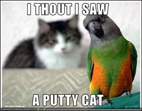I THOUT I SAW  A PUTTY CAT
