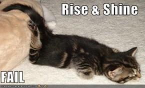 Rise & Shine  FAIL