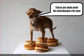 These are mine now!