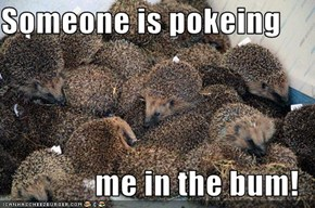 Someone is pokeing   me in the bum!