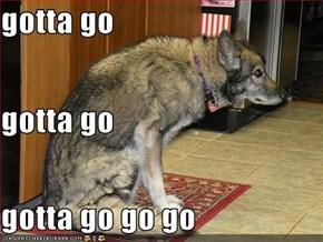 gotta go gotta go gotta go go go