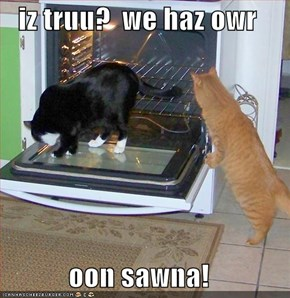 iz truu?  we haz owr  oon sawna!