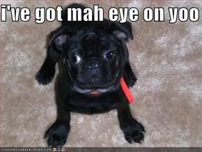 i've got mah eye on yoo
