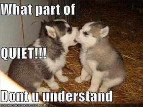 What part of  QUIET!!! Dont u understand