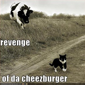 revenge  of da cheezburger