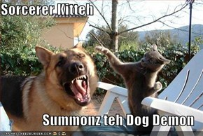 Sorcerer Kitteh  Summonz teh Dog Demon
