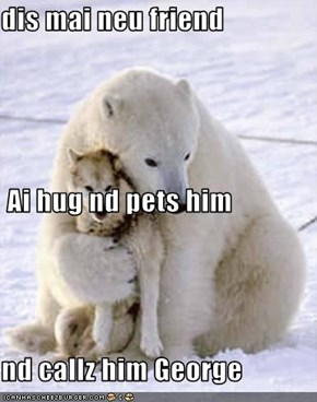 dis mai neu friend  Ai hug nd pets him nd callz him George