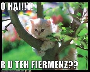 O HAI!!1!  R U TEH FIERMENZ??